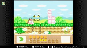 KirbyDreamLand3Animal